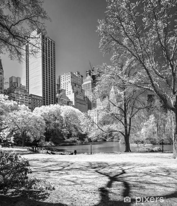 Fotomural Estándar Central Park, de Nueva York. EE.UU.. - Temas