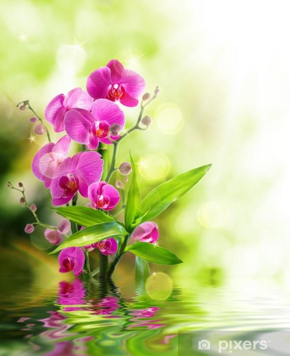 Pixerstick Sticker Mooie orchidee en bamboe voor de rand behandeling spa op het water - Thema's