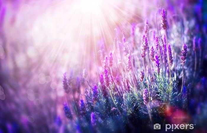 Vinilo Pixerstick Campo de la lavanda Flores. Crecer y Florecer Lavender - Temas