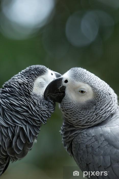 Sticker Pixerstick Parrot bird - Thèmes