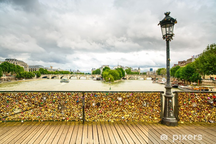Love padlocks on Pont des Arts bridge, Paris, France. Vinyl Wall Mural - European Cities
