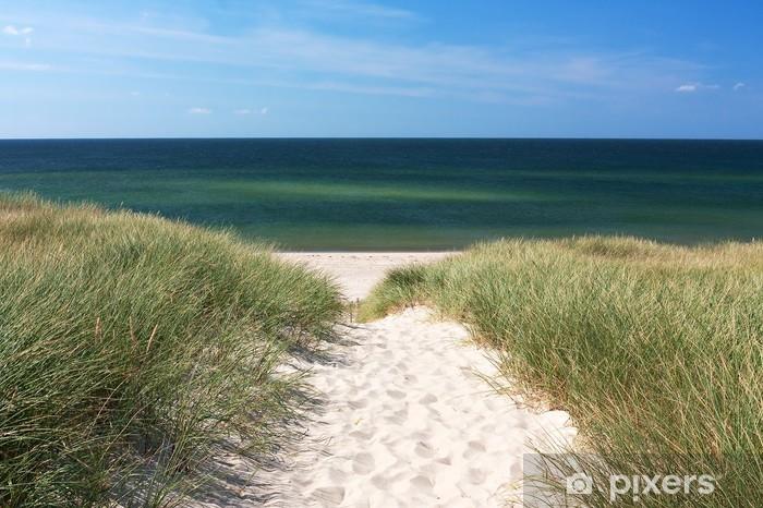 Weg zum Strand durch Dünen bei Kampen auf Sylt Pixerstick Sticker - Germany