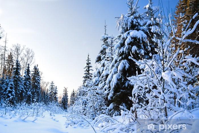 Vinyl-Fototapete Winterlandschaft mit Wald - Jahreszeiten