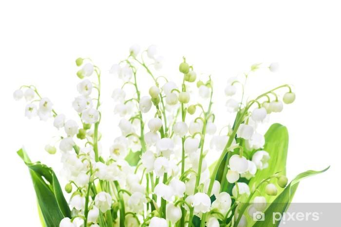 Fototapeta winylowa Konwalie - Kwiaty