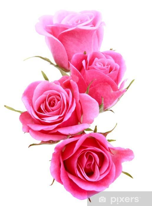 Sticker Pixerstick Pink rose bouquet de fleurs isolé sur fond blanc découpe - Thèmes