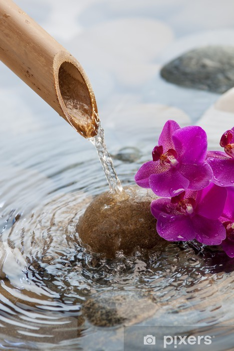 running water on stones next to flowers Self-Adhesive Wall Mural - Styles