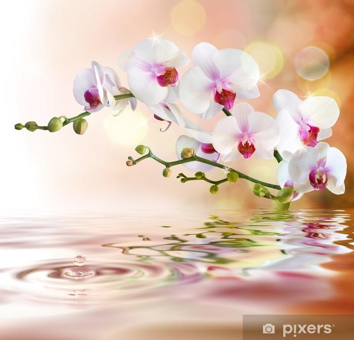 Pixerstick Sticker Witte orchideeën op het water met daling -