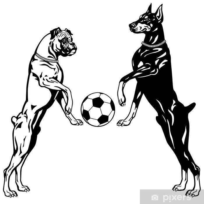 Papier peint vinyle Dobermann et le boxeur blanc noir - Mammifères