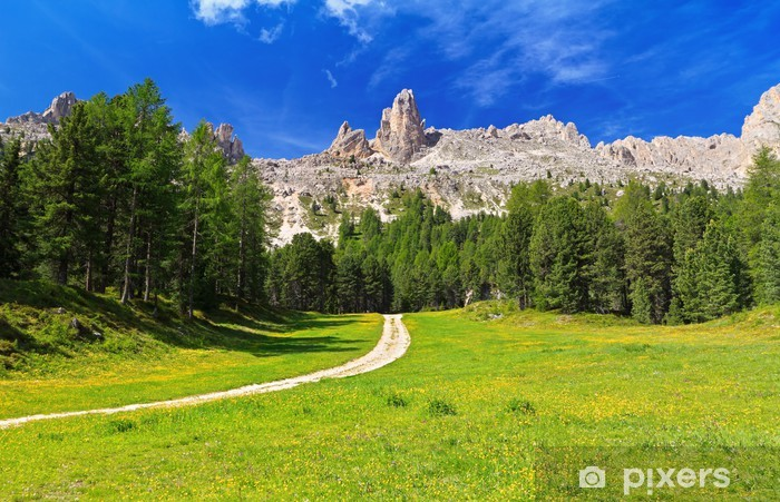 Carta da Parati in Vinile Dolomiti - Vaiolet Valley - Europa