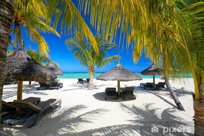 Fototapeta winylowa Leżaki i parasole na piaszczystej plaży, mauritius - Palmy