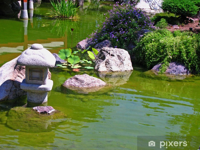 Pond in a Japanese garden Vinyl Wall Mural - Water