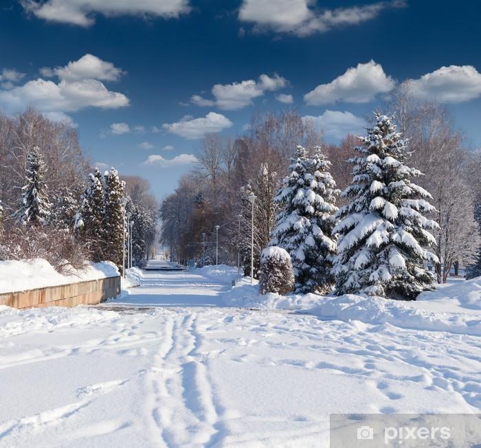 Vinylová fototapeta Krásný zimní krajiny v městském parku - Vinylová fototapeta