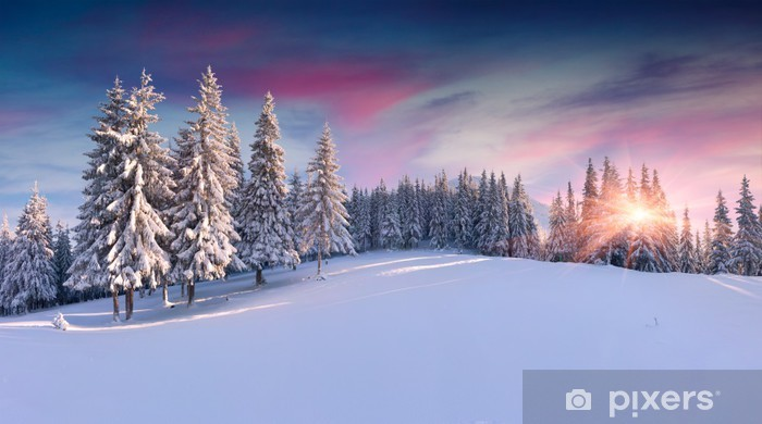 Fotomural Estándar Panorama de la salida del sol de invierno en las montañas - Panorámico