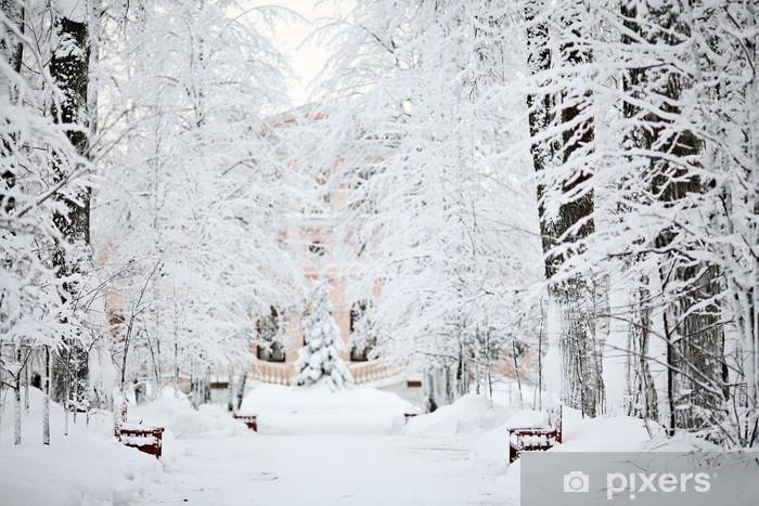 Pixerstick Sticker Koude winter forest landschap sneeuw - iStaging