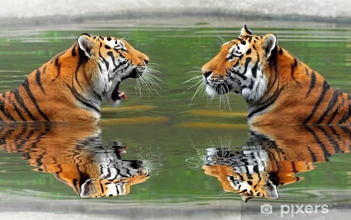 Sticker Pixerstick Tigres de Sibérie dans l'eau - Thèmes
