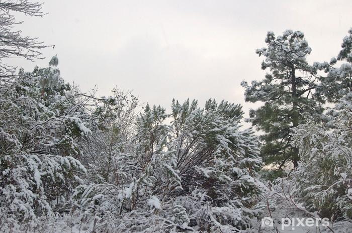 Sticker Pixerstick Forêt enneigée en hiver - Forêt