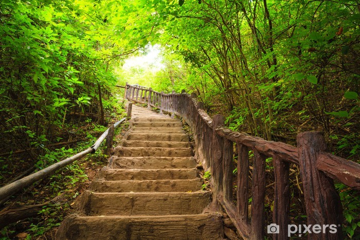 Fotomural Lavable Escalera al bosque, Kanchanburi, Tailandia -