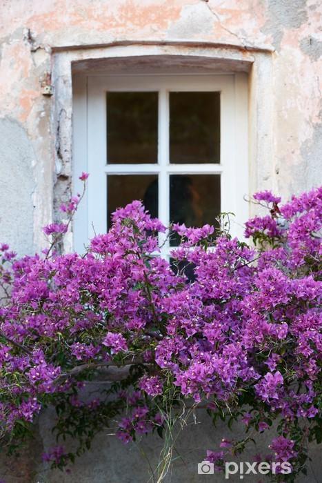 Vinylová fototapeta Okno s květinami v Saint Tropez - Vinylová fototapeta