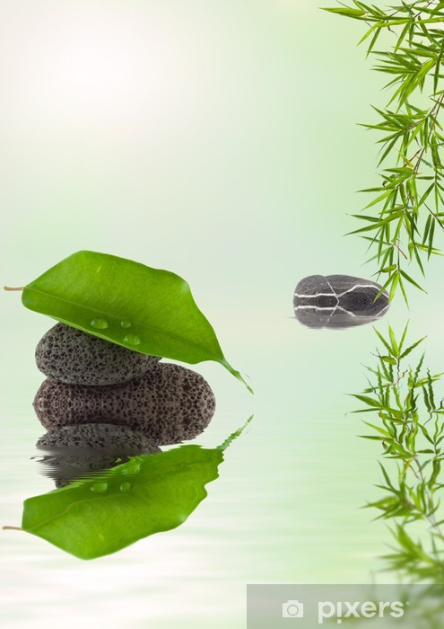 Vinyl-Fototapete Zusammensetzung der Natur Entspannung - Pflanzen