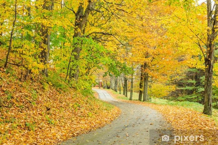 Naklejka Pixerstick Wyboista Country Road i kolory jesieni - Lasy