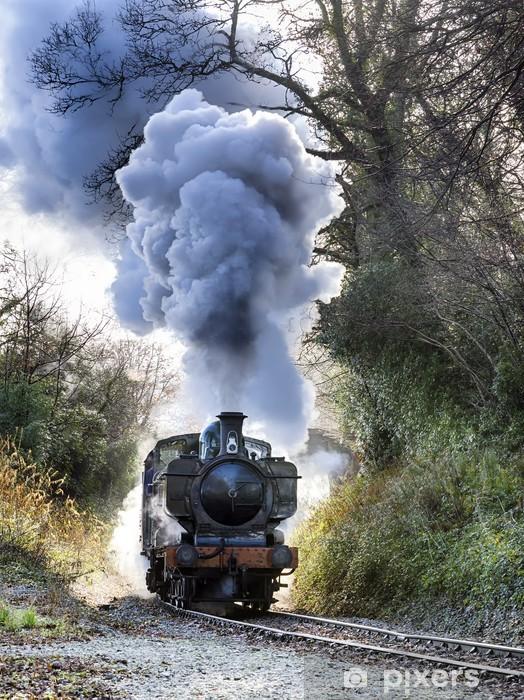 Papier peint vinyle Train a vapeur - Thèmes