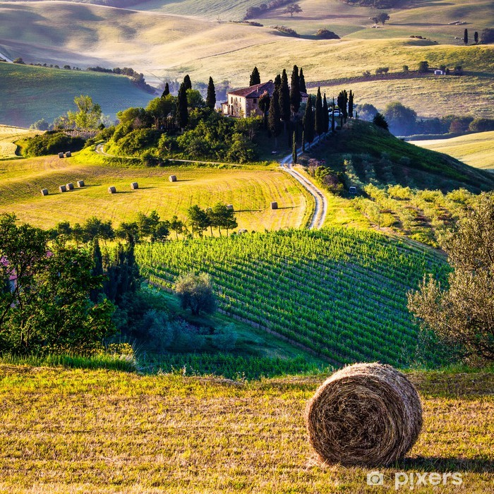 Tuscany Italian Landscape Wall Mural Pixers We Live To Change