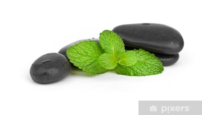 Papier peint vinyle Menthe fraîche sur les pierres noires avec des gouttes - Paix