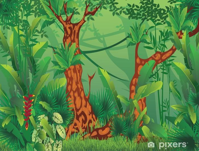 Carta Da Parati Foresta Tropicale : Carta da parati foresta tropicale esotico u pixers viviamo per