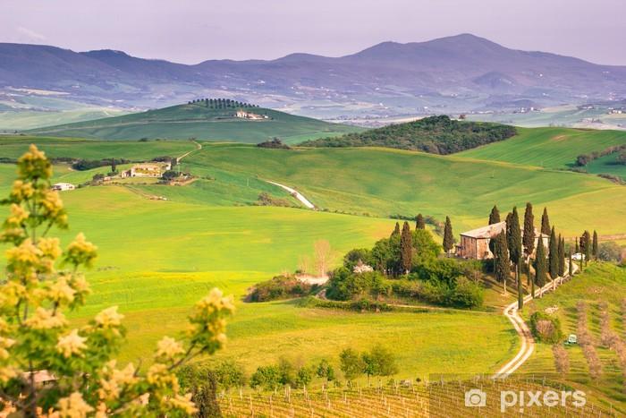 Naklejka Pixerstick Pejzaż włoski, Toskania - Łąki, pola i trawy