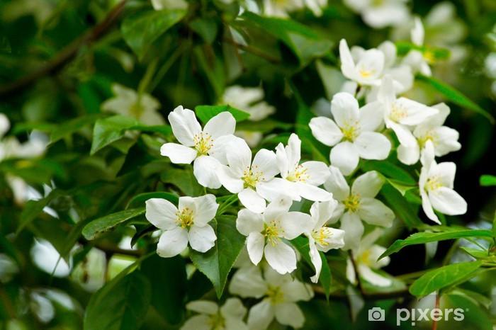 Naklejka Pixerstick Jabłko - Kwiaty