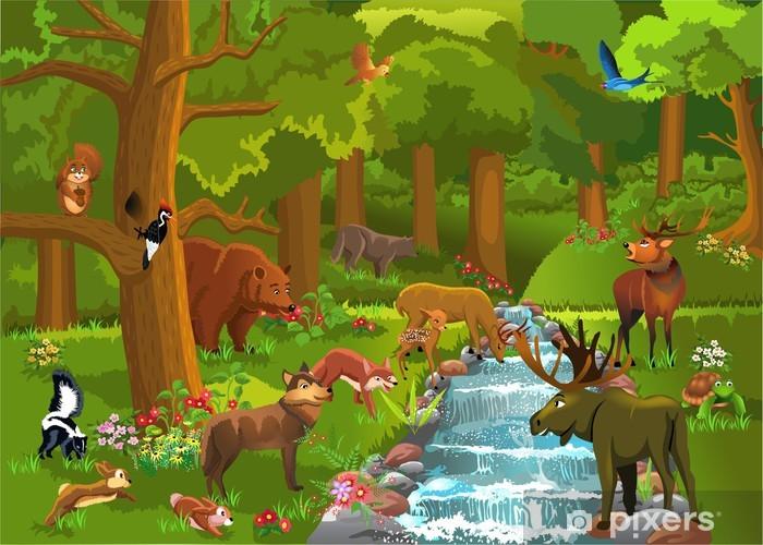 Papier peint vinyle Animaux sauvages dans la forêt - Mammifères