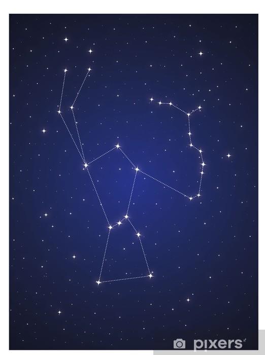 Papier peint vinyle Constellation d'Orion - Ciel