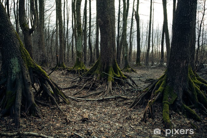 Sticker Pixerstick Dark forest - Fêtes internationales