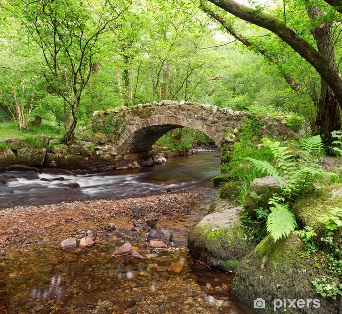 Poster Hisley Bridge, Hisley bois, Dartmoor Devon Royaume-Uni - Eau