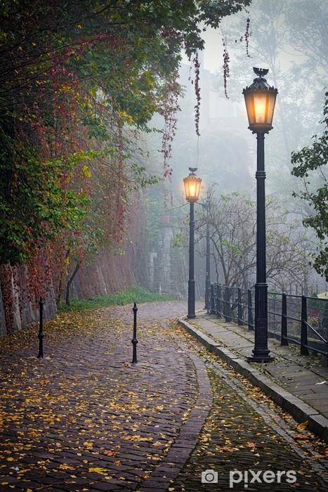 Fototapeta zmywalna Tajemnicze alejki w mglisty czasie jesieni z lampami zapalonymi - Tematy