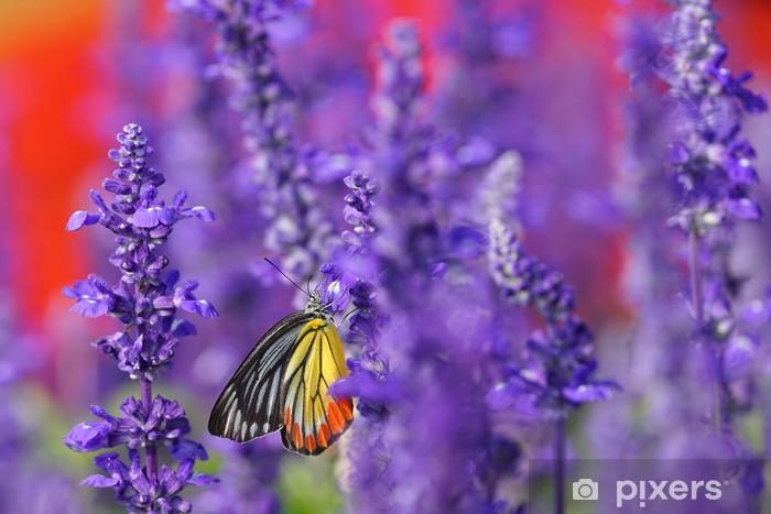 Sticker Pixerstick Papillon de monarque sur la lavande dans le jardin - Thèmes