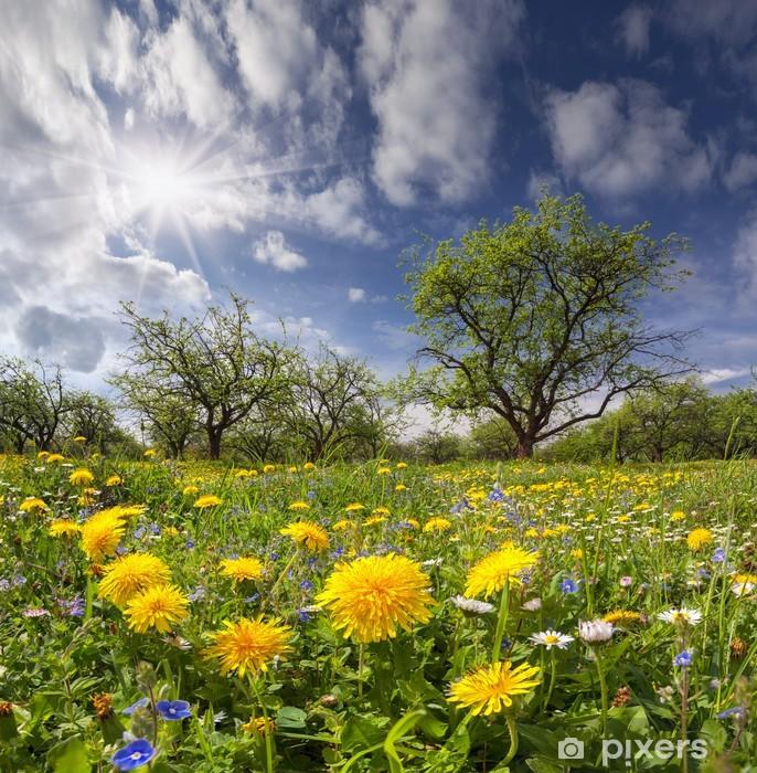 Dandelions on a green meadow in sunlight Pixerstick Sticker - Themes