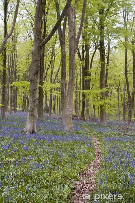 West Woods bluebells Table & Desk Veneer - Flowers