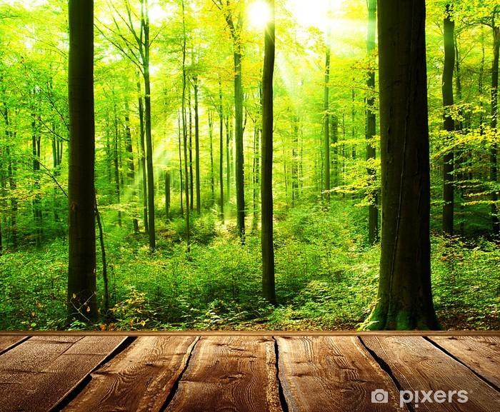 Fotobehang verse groene bos met zonnestralen en houten vloer