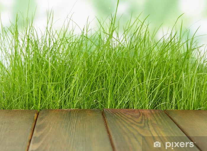 Fotobehang verse lente groen gras met houten vloer u2022 pixers® we