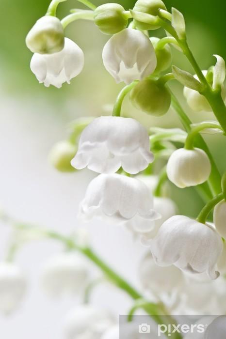 7854fd88e84f74 Fototapeta Delikatne kwiaty na gałęzi konwalii • Pixers® - Żyjemy by ...