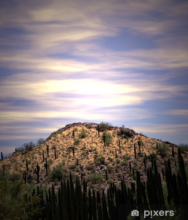 Naklejka Pixerstick Desert sunrise - Niebo