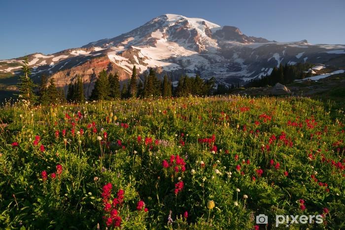Naklejka Pixerstick Kaskada Zakres Rainier National Park Mountain Paradise Meadow - Kwiaty
