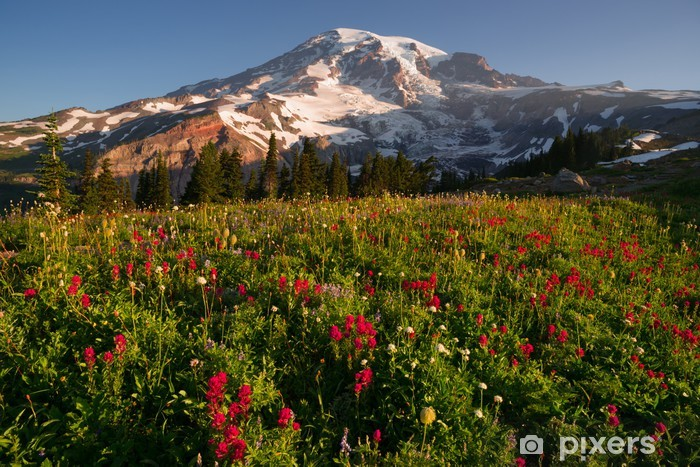 Cascade alue rainier kansallispuisto mountain paratiisi niitty Pixerstick tarra - Kukat