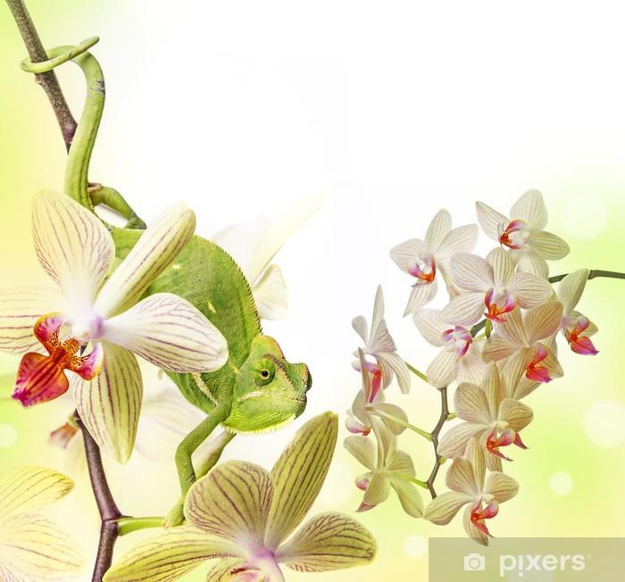Sticker Pixerstick Caméléon sur une orchidée - Thèmes