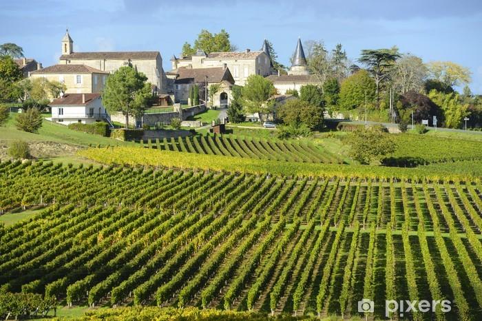Naklejka na drzwi Winnice Saint Emilion, Bordeaux Winnice - Ekologia