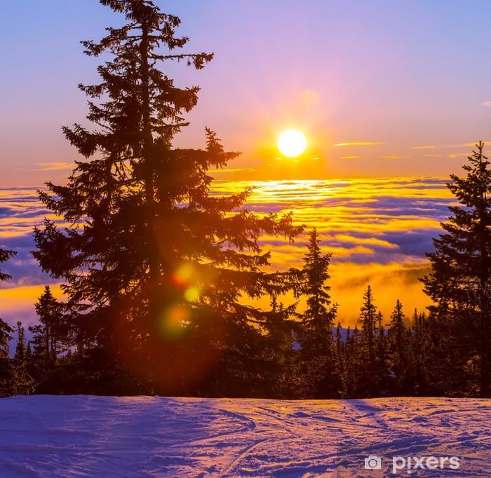 Vinyl Fotobehang Winter in de bergen - Thema's