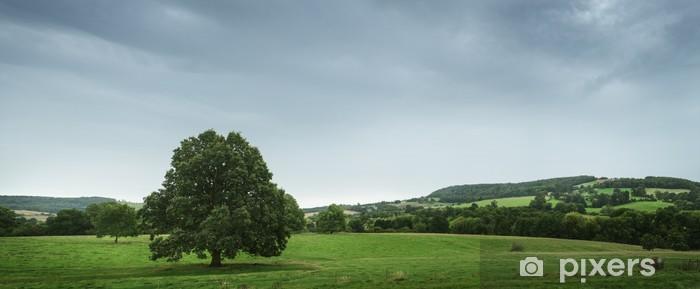 Vinylová fototapeta Pohled na krajinu v Anglii - Vinylová fototapeta