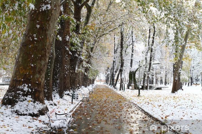 Vinyl-Fototapete Schnee im Park - Jahreszeiten