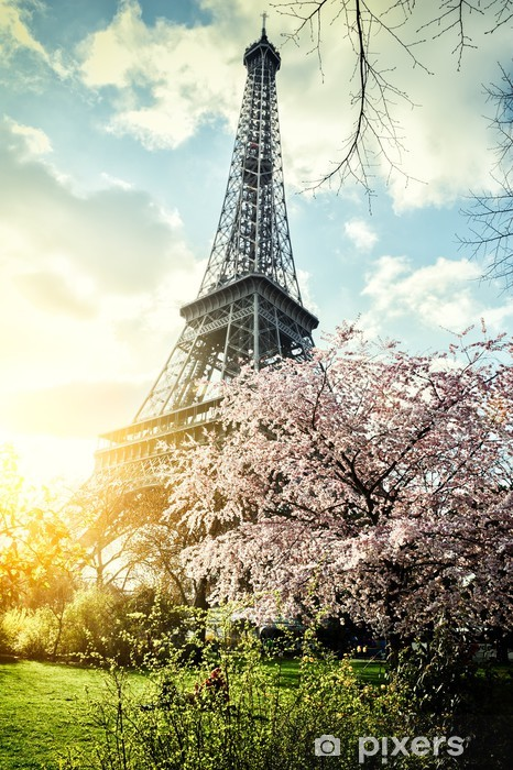 Springtime in Paris. Eiffel tower Vinyl Wall Mural - Themes